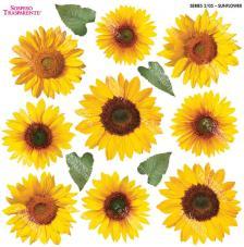 Sospeso transparente predisenyat Sunflower 23x23 cm