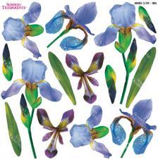 Sospeso transparente prediseñado Iris 23x23 cm