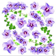 Lámina adhesiva Hibiscus 23x23 cm