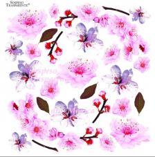 Sospeso transparente prediseñado Cherry Blossom 23x23 cm