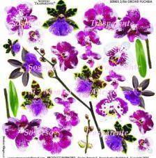 Sospeso transparente prediseñado Orchid Fuchsia  23x23 cm