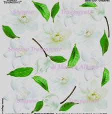 Sospeso transparente prediseñado Gardenia  23x23 cm