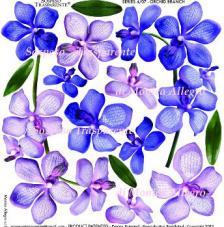 Sospeso transparent predisenyat Orchid Branch 23x23 cm