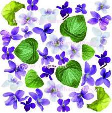 Lámina adhesiva Violeta 23x23 cm
