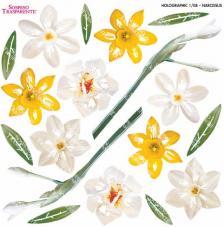 Sospeso transparente Narcissus 23x23 cm