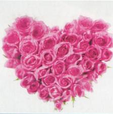 Tissu Coeur rollo 30cmx5m