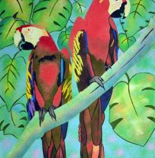 Parrots. 50x61 cm