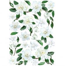 White Gardenia decoupage paper 35x50 cm