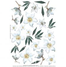 Helleboro Blue decoupage paper 35x50 cm