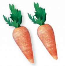 10 zanahorias de 18mm