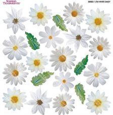 Sospeso transparente predisenyat White Daisy 23x23 cm