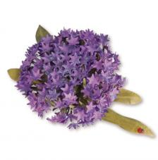Sizzix Thinlits - Flor globo