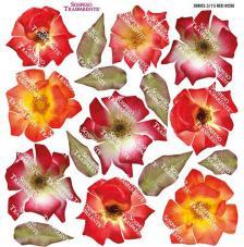 Sospeso transparente prediseñado Red Rose 23x23 cm