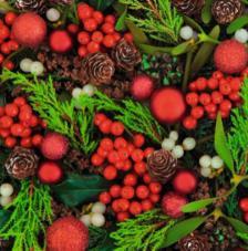 20 Servilletas Navidad. Vayas Rojas