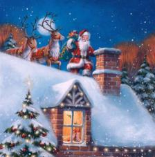 20 Servilletas Navidad. Santa con renos