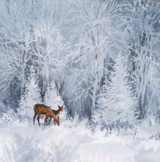 20 Servilletas Navidad. Ciervos nieve