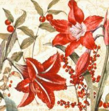 20 servilletas. Dos flores navidad