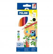 Caja con 12 lápices de colores hexágonales