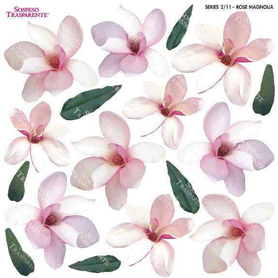 Sospeso transparente prediseñado Rose Magnolia 23x23 cm