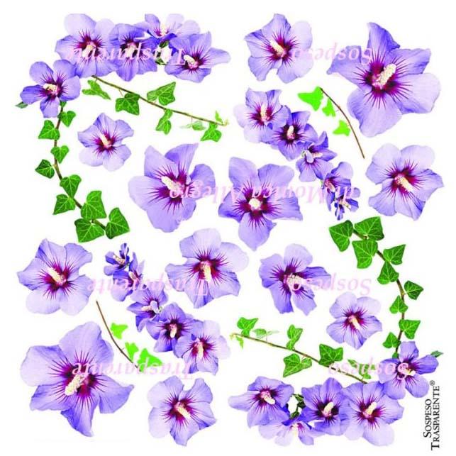 Sospeso transparente prediseñado Hibiscus 23x23 cm