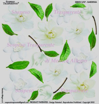 Sospeso transparente predesigned  Gardenia 23x23 cm