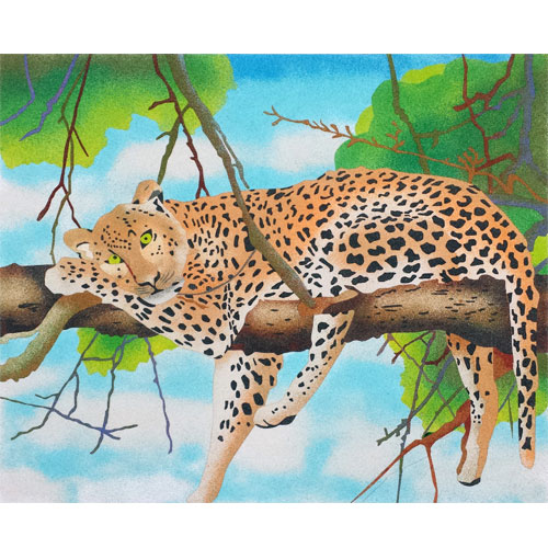 Leopardo. 2 medidas disponibles